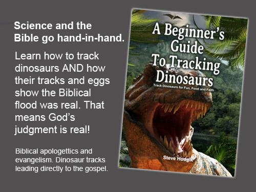 Traking Dinosaurs